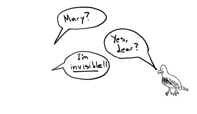 invisiblebird